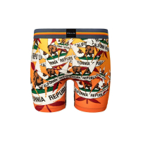 PULL IN Cotton Boxershort Fashion 2 caliweed
